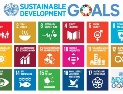 Hållbarhet och Klimat